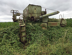 960 of 1096 (Yr 3) - Rustin away (Hi, I'm Tim Large) Tags: old harvester rusting overgrown claas corn iphone 365 366