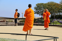 Getting the Shot (NZGandG) Tags: getty gettycenter losangeles orange monk buddha