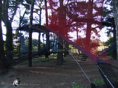 Groix Parc  Bout 16 (DD 29) Tags: bretagne morbihan le groix parcbout filet arbres jeux