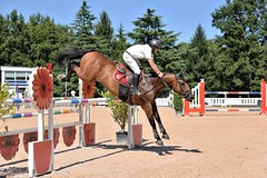 DSC_1071 (2) (ploufjf_64) Tags: paus show jumping chevaux pau 2016