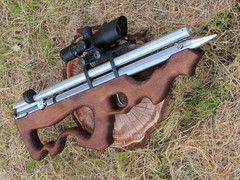 rifle (vladimir_chernenkho) Tags: pcp rifle airrifle hanter hunting hunt huntingrifle waepon gun huntinggun huntingweapon womanhunting    girlshooting womanshooter womanweapon girlgun girlweapon girlrifel hunter airgun airgunhunting shooter shooting target targetshooting ukraine  outdoor   riflescope greyhound borzoi  bow compound archery bowhunting arrow people