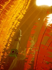 Fly Away (alt) (PulseZET) Tags: abzu giantsquid 505games ue4 unrealengine4 reshade reshadeframework