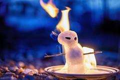 Goodbye Winter (Michael Kline) Tags: march roanoke va 2015