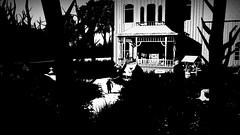 White Night_20150304170430 (arturous007) Tags: blackandwhite noiretblanc ghost oldschool puzzle horror mansion playstation lumires nuitblanche manoir filmnoir 1930 psn ombres whitenight survivalhorror ps4 pstore osome narrativepuzzle