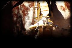 Bota de potro (Eduardo Amorim) Tags: horses horse southamerica argentina criollo caballo cheval caballos spur cavalos sperone pferde cavalli cavallo cavalo gauchos pferd ayacucho loro apero chevaux gaucho cavall staffa  amricadosul loros stirrup platera gacho estribo amriquedusud provinciadebuenosaires  recado gachos  sudamrica esporas suramrica amricadelsur sdamerika crioulo caballoscriollos criollos espora  pilchas espuelas buenosairesprovince pilchasgauchas steigbgel recao americadelsud plateracriolla espuela botadepotro crioulos cavalocrioulo botadegarro americameridionale botagarrodepotro potrera caballocriollo eduardoamorim cavaloscrioulos estribera estrivo trier
