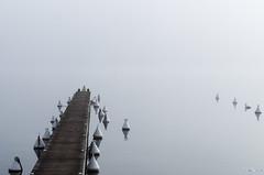 Fin du Chemin (Christophe Demay) Tags: france alps fog alpes brouillard ponton lacdannecy hautesavoie sevrier rhônealpes annecylake sévrier