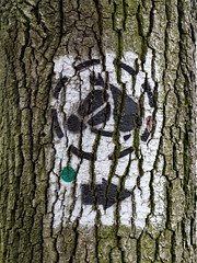 Just Horsing Around 2 (Mattijsje) Tags: horse tree sign painting boom route bark pict pictogram app verf schors