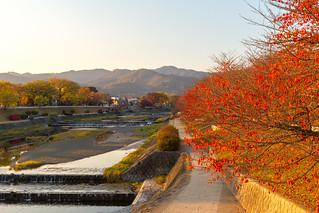 鴨川の秋 / Kamo-gawa River in Autumn
