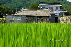 Namhae, Korea  (Francois Saikaly) Tags: village south korea  namhae gyeongsang