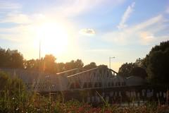 Hamme (Luc Herman) Tags: mirabrug hamme durme bridge river hammebrug cultural heritage monument sun sunset sunny oostvlaanderen belgium flanders