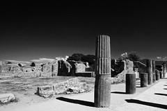 79 AD: Tempus, Vita (popong | pilipinas) Tags: ruins pompeii ruinsofpompeii pompeiiruins naples italy vesuvius mountvesuvius oscans rome romanempire romanlife ancientcivilization romancivilization excavation historicalsite archaeology archaeologicalsite archaeologicalexcavation history timecapsule