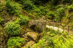 Bridge over Aira Force (ian.emerson36) Tags: bridge stone forest canon fence woodland rocks path walk peaceful cumbria greenery colourful shrubs