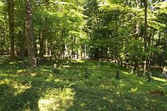 IMG_7623 (RARstudios) Tags: newhopecemetery abandoned cemetery rarstudios newhope