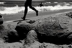 Fast and slow - our playground (Toygun zbek) Tags: sea turtle jogger holiday travel sand figur bw blackandwhite fuji fujifilm xf35 sun light shadow xt1