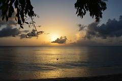 DSC_0403 copy (iKoriJoseph) Tags: vacation barbados beach beautiful colour concept clothing korina joseph photography canada sun summer sunset sunrise sunglasses water boat house villa