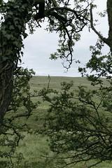 (Demanded By The Landscape - Landscape Photography) Tags: landscape przemyslawstroinski fineartphotography