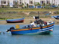 Rabat Bou Regreg_0288 (JespervdBerg) Tags: holiday spring 2016 africa northafrican tamazight amazigh arab arabic moroccanstyle moroccan morocco maroc marocain marokkaans marokko rabat bouregreg