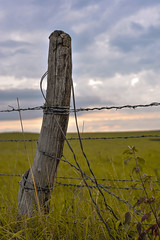 Wood and Wire (thefisch1) Tags: nikon nikkor d700 kansas storm cloud country road wind turbulence fence post wire barbed pasture horizon squall roll bluestem prairie interesting flint hills oogle calendar