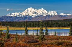 Denali on an Autumn Day (Cole Chase Photography) Tags: denali alaska fall autumn fallcolor canon eos5dmarkiii