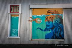 'Sea Walls: Murals for Oceans'- Napier, HB, NZ (flyingkiwigirl) Tags: sea walls murals for oceans napier hawkes bay pangeaseed