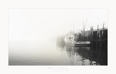 the waiting (l'attente) (patrice ouellet) Tags: patricephotographiste lattente thewaiting harbor port fisheries pche grandmanan island le