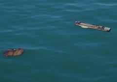 Flotsam and Jetsam (New Forest Man) Tags: sea solent rubbish flotsam southamptonwater anf jettison