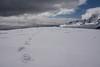 Antarctic Summit (Alex Cowan) Tags: mountain expedition climb antarctica summit