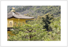 Kinkaku-ji (Pictures from the Ghost Garden) Tags: japan nikon kyoto zoom buddhist buddhism zen temples dslr 18105mm d7100