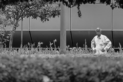 retratos (lu_dgm) Tags: old cidade brazil people white man black flores flower men guy luz branco brasil canon photo olhar minas gerais liberdade pic grades preto mg momento contraste praa homem peb bew horizonte bh solido senhor belo idade seor