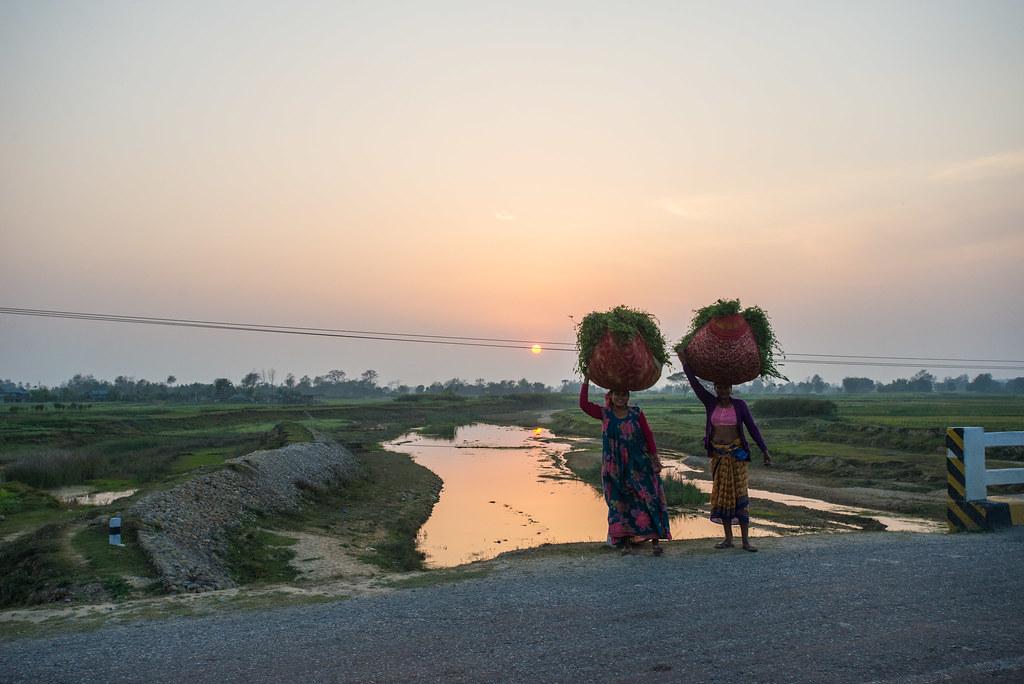 Nepali Ladies