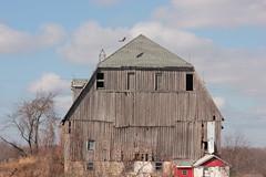 shadow (epicDi) Tags: shadow ontario canada barn spring hawk niagara