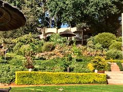 Gardens (RobW_) Tags: africa gardens march south saturday hydro western cape stellenbosch 2015 lindida mar2015 21mar2015