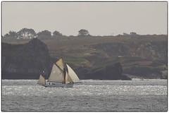 Le Mutin (2) (M DEBIERRE) Tags: france french boat nikon brittany sigma bretagne brest shipping phare minou breiz mutin 120400 shipspotter d7000 lemutin