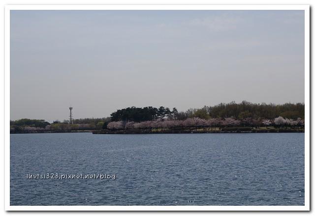 일산호수공원50