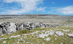 A Wall Across the Burren. (DWH284) Tags: ireland countyclare burren karst limestonecountry murroughkilly blackheadloop