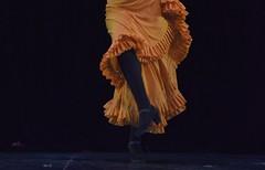 DSC_1505_ (Gabriela Andrea Silva Hormazabal) Tags: danza flamenco djelem gitana gipsy bailarina buenosaires teatrodelglobo auditoriomariobenedetti torre comunicaciones antel montevideo uruguay argentina ciad concurso certamen mundial
