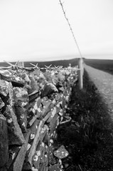 Barbed Wire (Vixctor) Tags: moher barbed wire