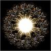 Internal Combustion (Ross Hilbert) Tags: fractalsciencekit fractalgenerator fractalsoftware fractalapplication fractalart algorithmicart generativeart computerart mathart digitalart abstractart fractal chaos art newtonfractal mandelbrotset juliaset mandelbrot julia spiral orbittrap