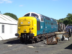 55022 'Royal Scots Grey', Grosmont, 5/8/16 (taken with permission during a supervised shed visit) (Alister45) Tags: 55022 rsg royalscotsgrey grosmont 55007 pinza deltic class55 nymr yorkshire