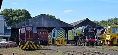 A1 Locomotive 'Tornado' blends in well, as it simmers down at Wansford, Nene Valley Railway. 15 08 2016 (pnb511) Tags: nenevalleyrailway heritage trains steam diesel preserved wansford hunslet loco locomotive workshop a1 peppercorn power 460 pacific lner track shunter