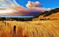 Soberanes Fire at Robinson Canyon (Michael T. Morales) Tags: soberanesfire santaluciapreserve california grass fence smoke