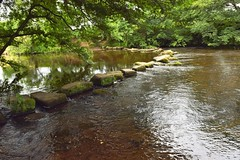 Stepping Stones (daviddaniels989) Tags: river derwent water stepping stones trees ripples shade hathersage derbyshire