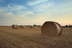 Hay bales at sunset (Marco MCMLXXVI) Tags: misinto brianza pianura padana estate tramonto balle fieno summer sunset countryside hay making bales round landscape vista panorama colors vacation outdoor italy europe rawtherapee sony nex5 field campi scenery