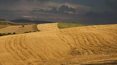 val d'orcia (LaCiz) Tags: tuscany landscape tuscanylandscape orcia valdorcia monticchiello sun summer