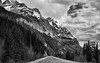 The Road Ahead with Mountain Peaks (Black & White) (thor_mark ) Tags: banffnationalpark blackwhite blueskieswithclouds canadianrockies centralfrontranges clinerange day4 evergreen evergreentrees highway highway93 hillsideoftrees icefieldsparkway lookingse mountwilson mountains mountainsindistance mountainsoffindistance nature nikond800e northsaskatchewanriverranges project365 road silverefexpro2 snowcapped standinginmiddleofroad trees alberta canada rockpaper