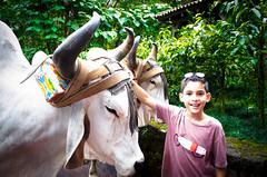 DSC_0800 (errolviquez) Tags: familia hijos paseos costa rica bela ja naturaleza catarata sobrinos