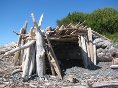 driftwood fort_7282 (Michael.C.G) Tags: driftwood shelter fort oakbay mcneillbay