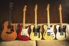 The Family (Daniel Y. Go) Tags: acoustic classictantique d810 electric fx fender guitarporn nikon nikond810 philippines strat stratocaster suhr taylor tele telecaster guitars music