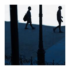Lumire crue (hlne chantemerle) Tags: extrieur france ombres parcsetjardins paris paysages photosderue soleil chaleur lumire ombrebleue silhouettes outside summer blueshadow light sun