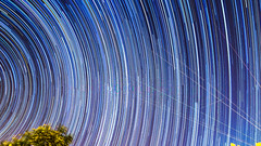 Perseids 2016 (Gary Hoyles UK) Tags: stars perseids noth metior 2016 trails meteor
